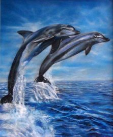 Dolphins Oil Painting by Melody Owens